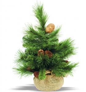 1326260_xmas_tree